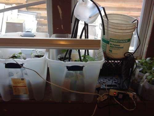 Best images about arduino garden on pinterest raised