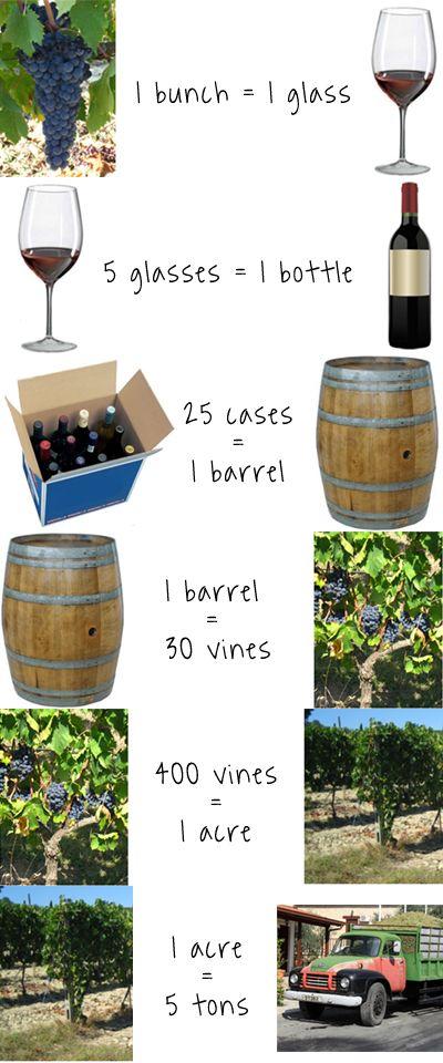 ¡Algunas #curiosidades sobre el #vino! ¿A qué equivale un racimo de uvas? #Infografía