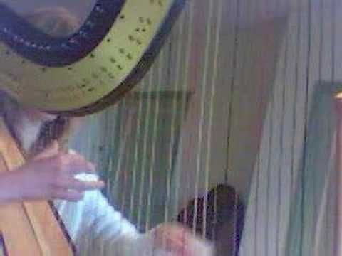 Pachelbel's Canon in D, arranged for harp by Sylvia Woods. ot the best quality video but love the song and the interest