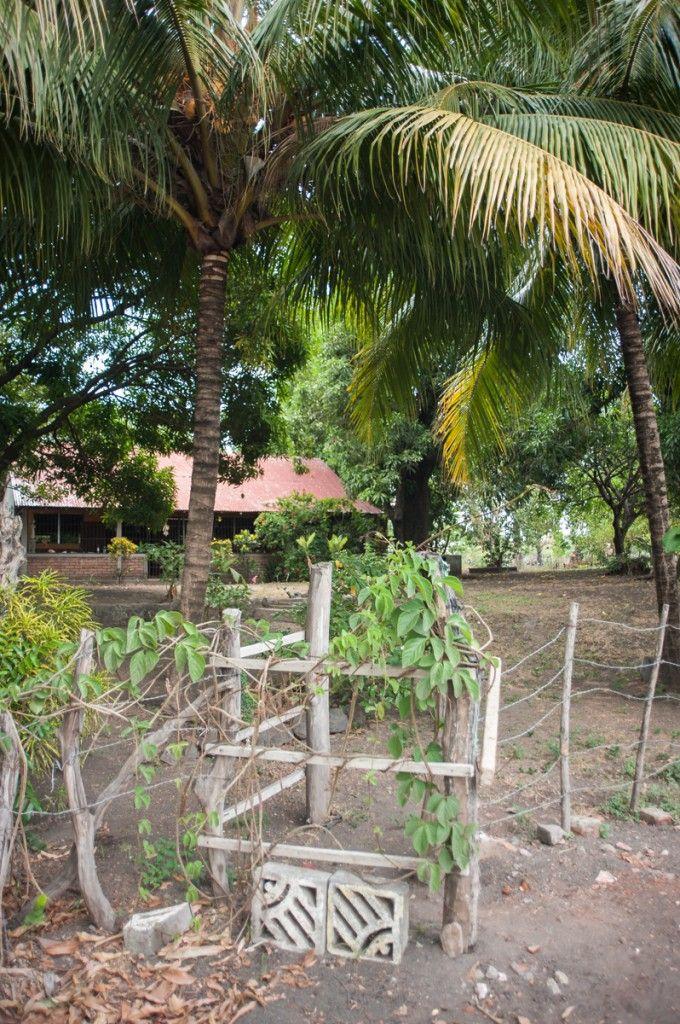 House sitting sur l'île d'Ometepe au Nicaragua (Detour Local) -> Un grand jardin avec vue sur le lac Nicaragua www.detourlocal.com/house-sitting-ile-ometepe-au-nicaragua/