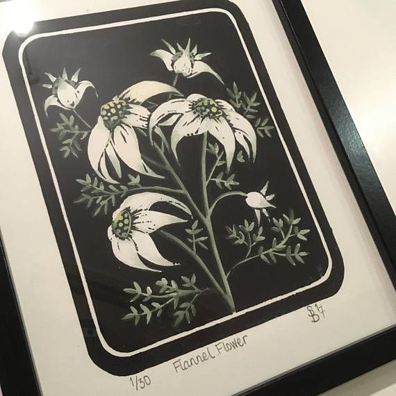 Lino Print  Australian Flannel Flower  Hand Pulled and