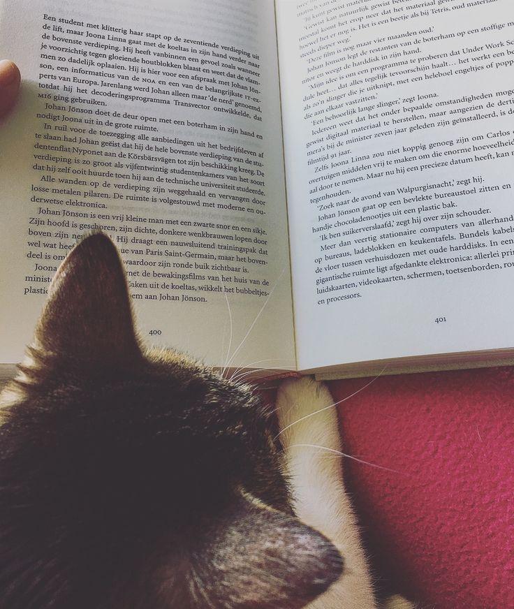 Bookstagram @ilsie.reads