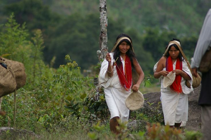 Koguis Etnias Indigenas de la Sierra Nevada de Santa Marta en Valledupar, Colombia By Provincia Hostal Valledupar