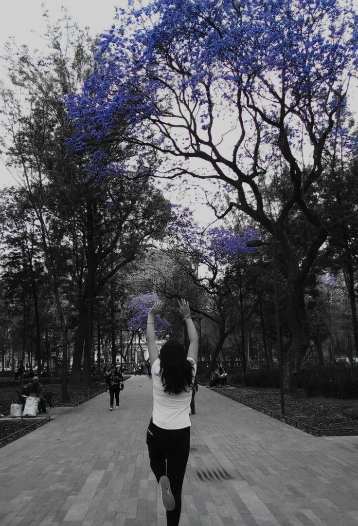 """""""Quiero continuar loca, viviendo mi vida como la sueño y no como los demás desean.""""  /•Libro: Veronika decide morir. / •Autor: Paulo Coelho."""