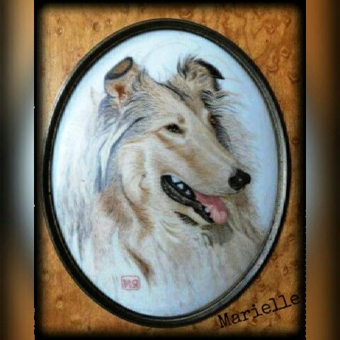 """Collie"", porcelain painting"