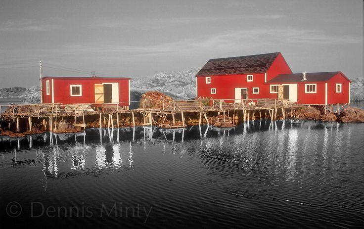 Red Sheds, Change Islands, Newfoundland, Canada