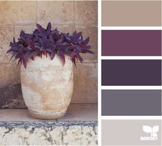 Purpley tones. Great for decorating a room with accents. This one's called planted tones. Got it from design-seeds.com
