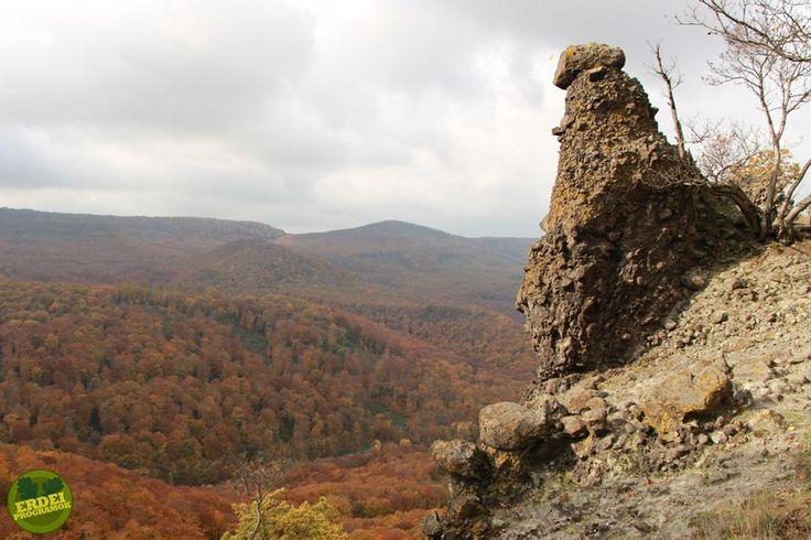 Vadálló-kövek, Visegrádi-hegység   Erdeiprogramok.hu - Élményekben gazdag magyar erdők