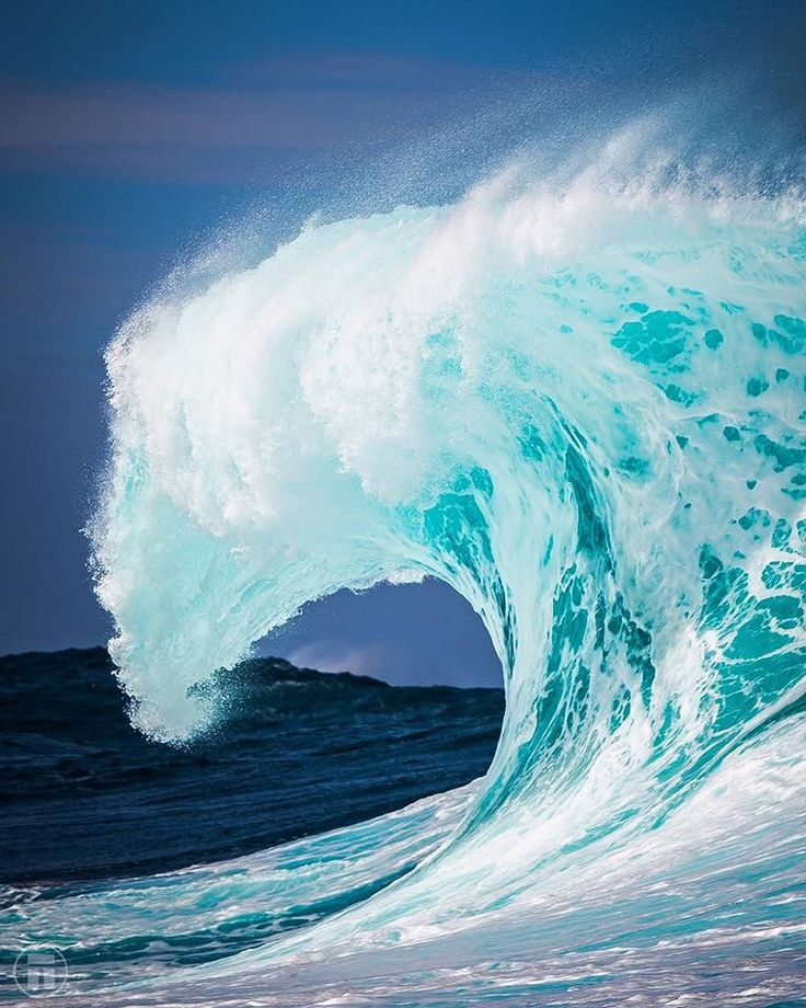 73 best Waves images on Pinterest The wave, Ocean waves and Waves