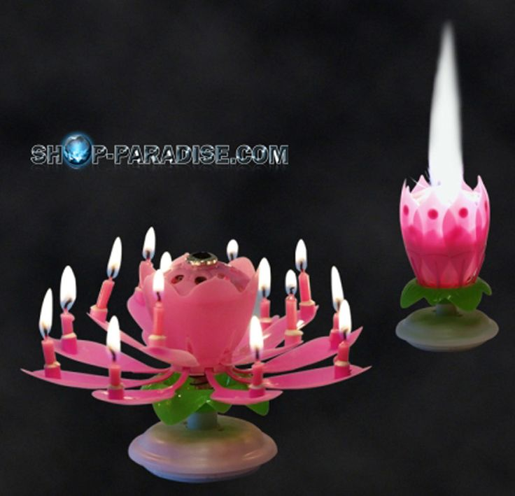 SHOP-PARADISE.COM:  Musik-Blumenkerze, rosa 5,03 €