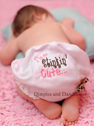 @Hollie Wyatt  This website has some really cute stuff!  Pink & Leopard Stinkin' Cute Bloomer