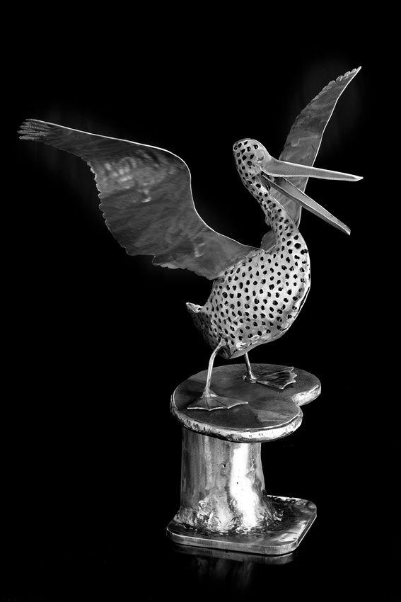 Art Reproductions - PELICAN - artist STEPHEN COBURN