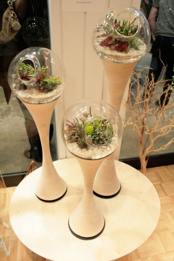 shades of 1970's terrariums.. even the stand looks like it..  so is this considered retro contemporary?? lol  mini gardens