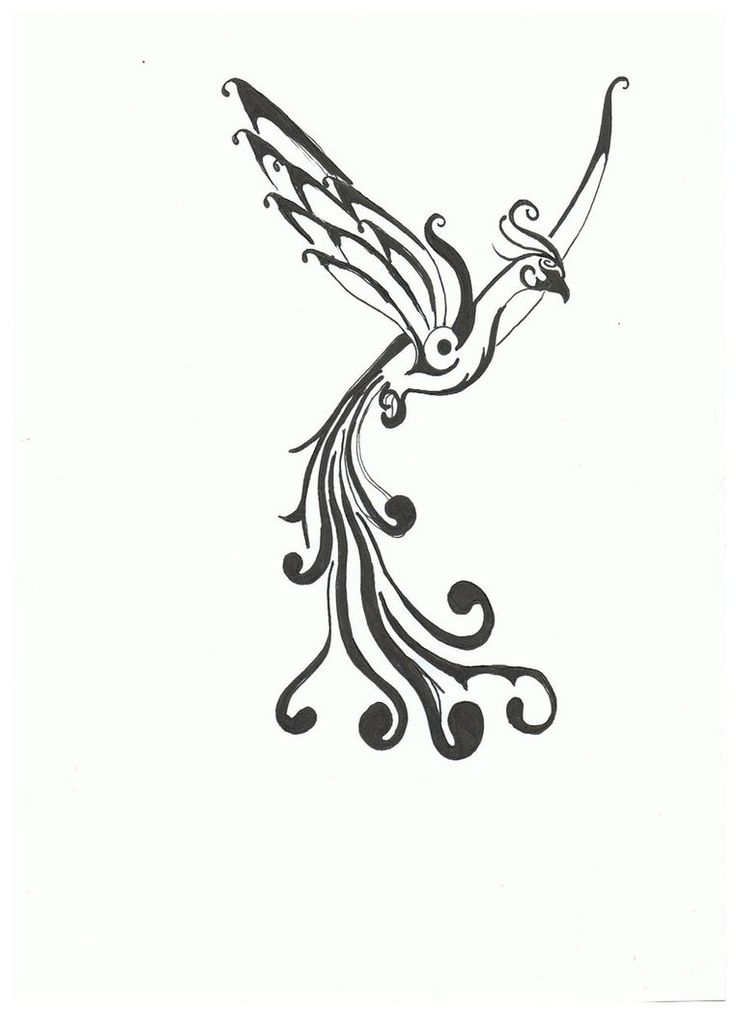 Pheonix tattoo, rise from the ashes to become something new. White ink?