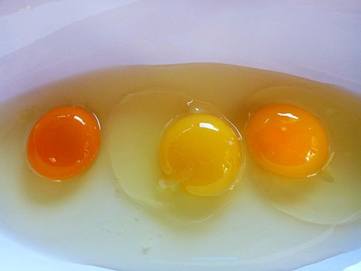 1000+ ideas about Nutritional Value Of Eggs on Pinterest | Egg ...