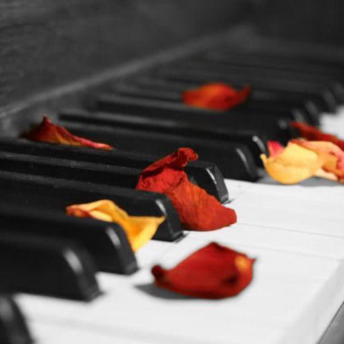 Wedding Piano Background http://bennymartin.com.au Buy on itunes: https://itunes.apple.com/au/album/popular-piano-songs-wedding/id652165646