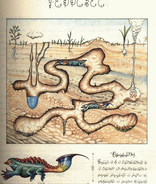 Los dos libros más raros del mundo: Manuscrito Voynich y Codex Seraphinianus