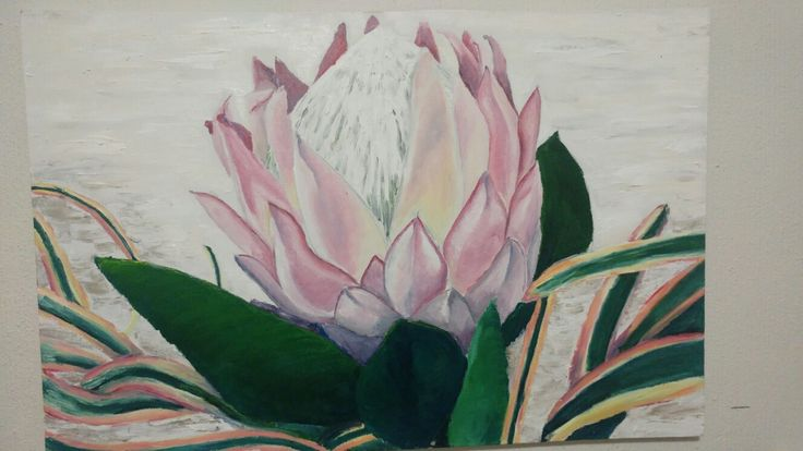 Protea Oil paint on canvas