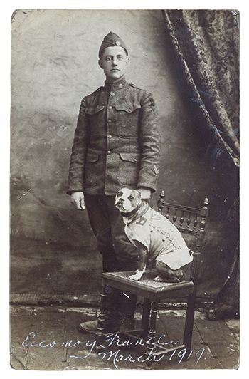 Sergeant Stubby and J. Robert Conroy, March 1919. Courtesy of Division of Armed Forces/Smithsonian National Museum of America History