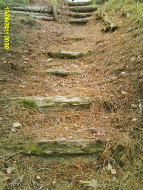 more stairs in the woods made a long long time ago...