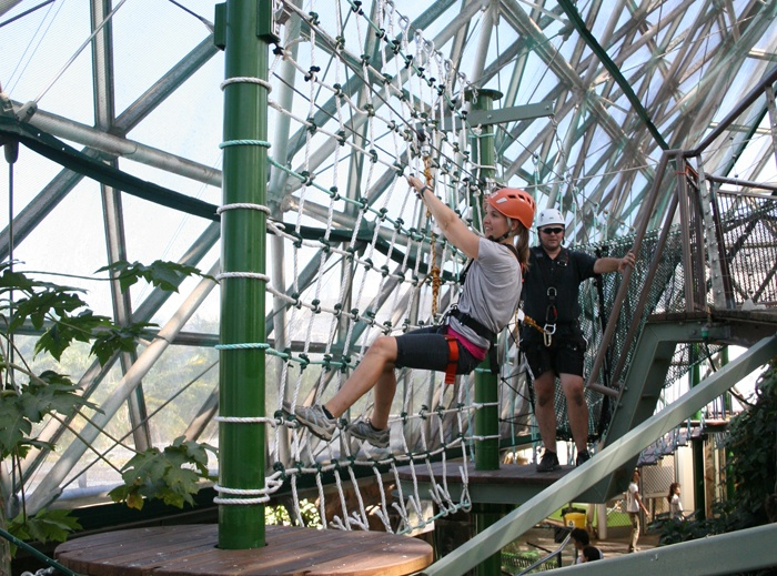 Zipline over Goliath, the four-metre croc, who enjoys his residence at Cairns Wildlife Dome on the new ZOOm challenge ropes course #Tropicalnorth #ropecourse