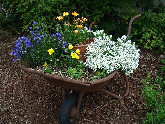 Flower Garden Ideas With Old Wheelbarrow 155 best wheelbarrows & wagons in the garden images on pinterest