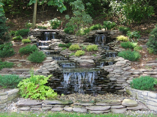 Fish Dying In Backyard Pond :  features) on Pinterest  Gardens, Wall fountains and Backyard ponds