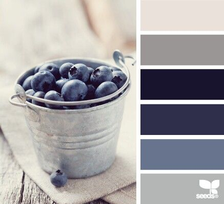 Living room/ kitchen colors; navy would be fireplace accent wall
