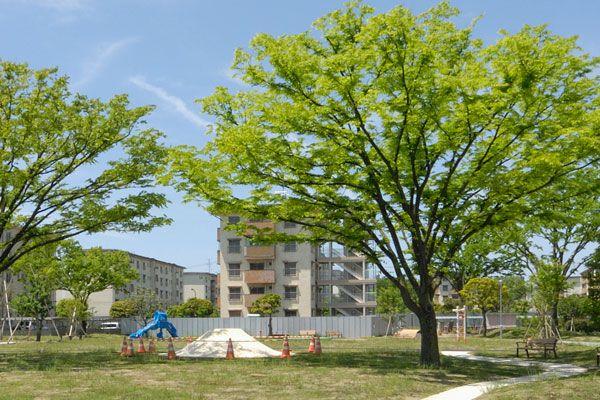 築50年、UR花畑団地で1棟丸ごとリノベーションを実施!