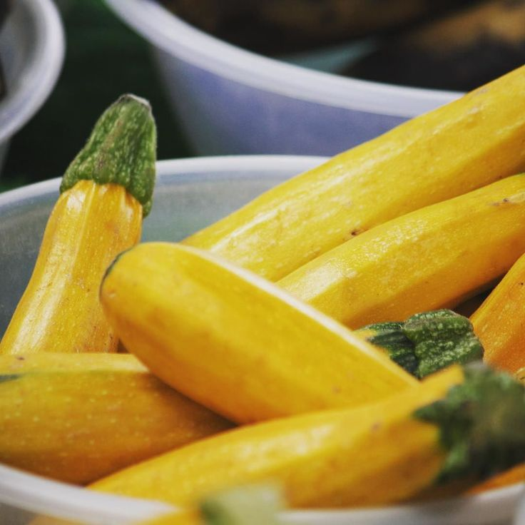 Golden zucchini or yellow courgettes? #goldenzucchini #yellowcourgette #farmersmarket #summersquash #squash #zucchina #yellow #freshveggies #marketgarden #raw #bestofvegan #highcarb #vegan #foodblogger #foodfeed #rawvegan #whatveganseat #eatclean #morerawfood #veggies #eatmoreplants #nourishing #wholesome #govegan #vegetarianlife #market #gardenmarket