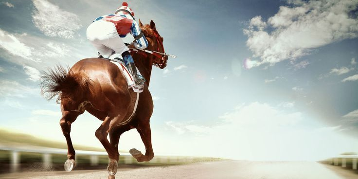 Cudworth's Racing Lays | Betting Gods created by Tom Nelson, Professional Sports Tipster