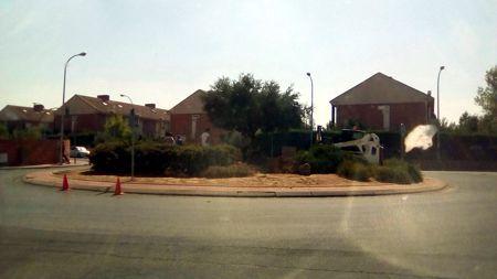 Critican la retirada del olivo de la rotonda de la Avenida de Meco (Alcalá de Henares)