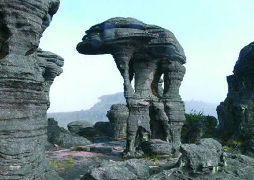 Resultado de imagem para estatuas roraima