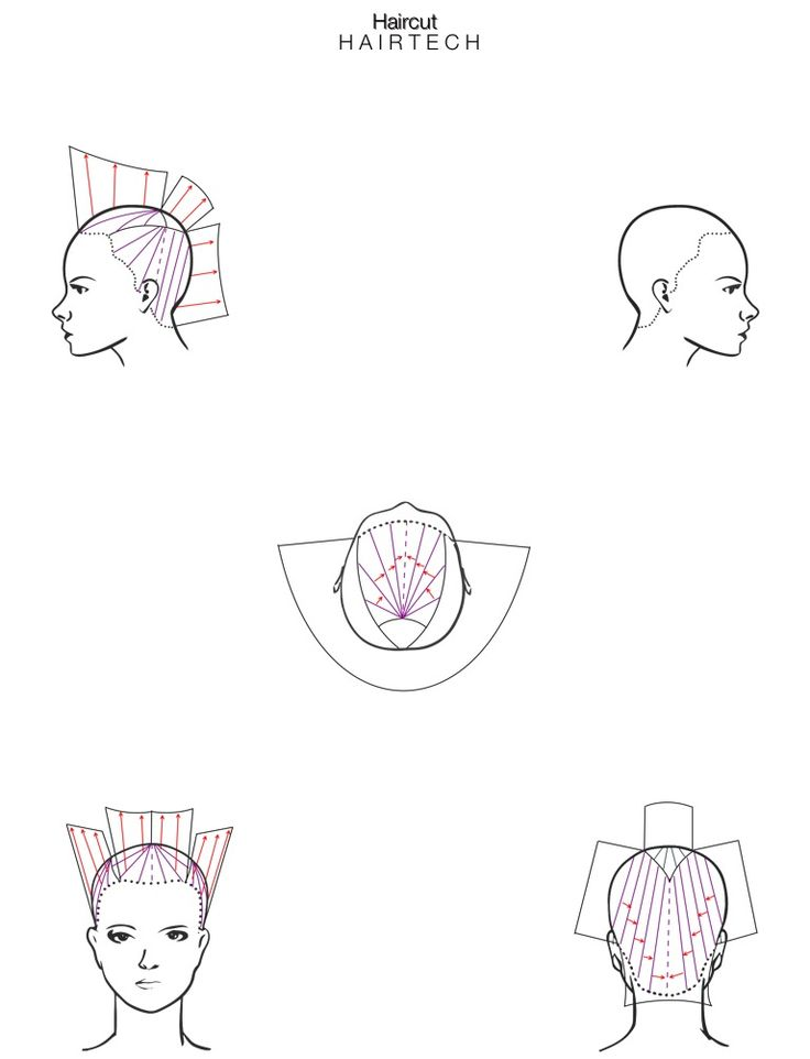 haircut  headsheet