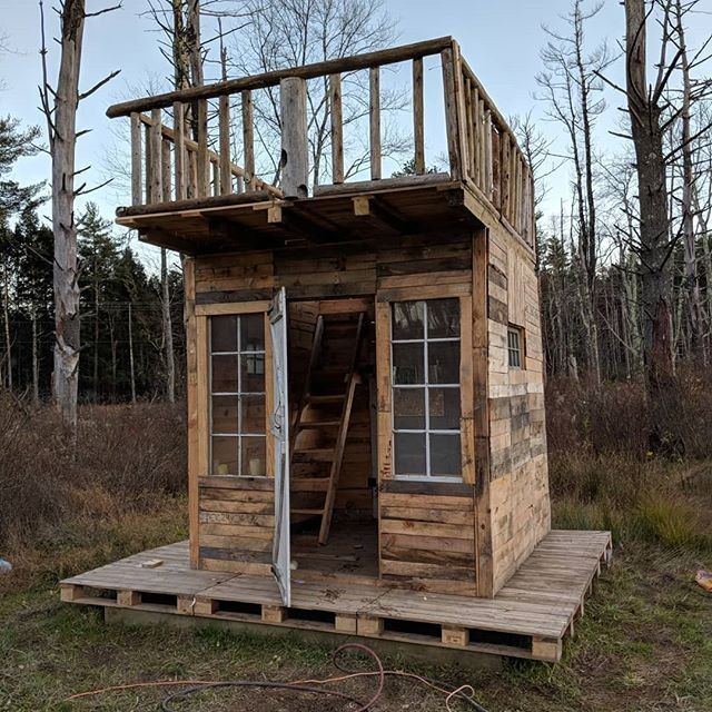 Build A Dog House With Recycled Pallets Pallet Tree Houses