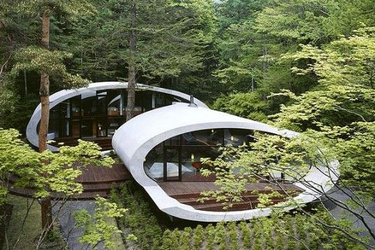 Organic Japanese Shell Residence Wraps Around a Centenarian Fir Tree | Inhabitat - Sustainable Design Innovation, Eco Architecture, Green Building