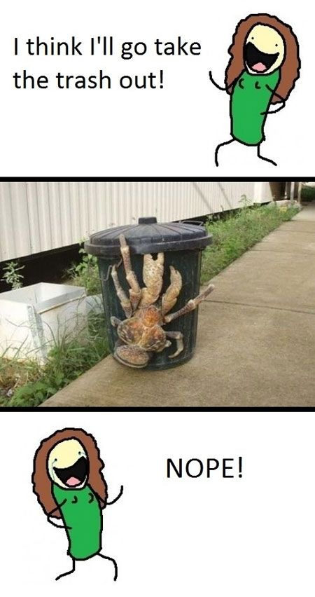 giant crab on trash can meme | Crab Trash Can