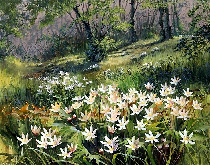 Mary Dipnall — Wood Anemones  (800×628)