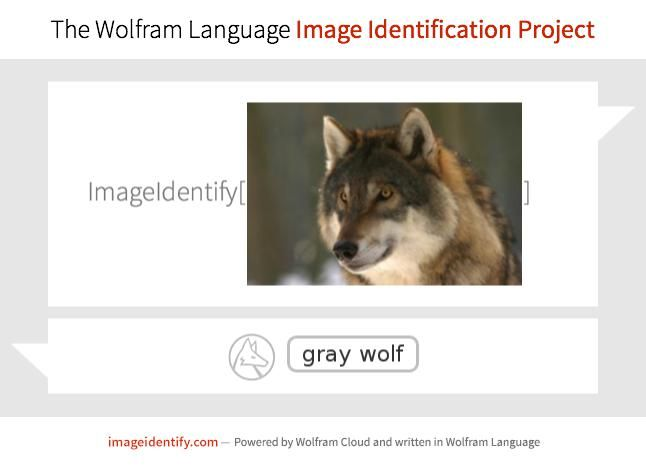 Artificial intelligence at work: automatic image identification by the Wolfram Language