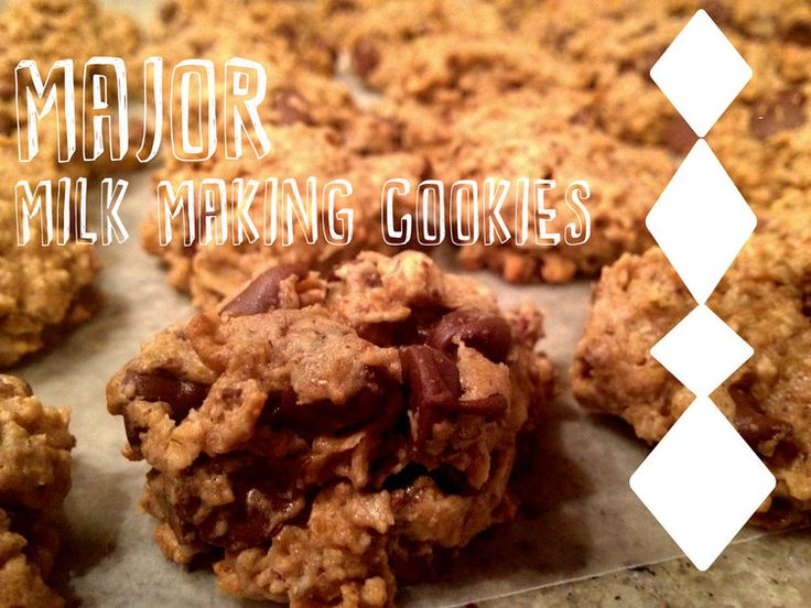 Lactation Cookie Perfected — Engaging Mystery #lactationcookie #breastfeeding #cookies