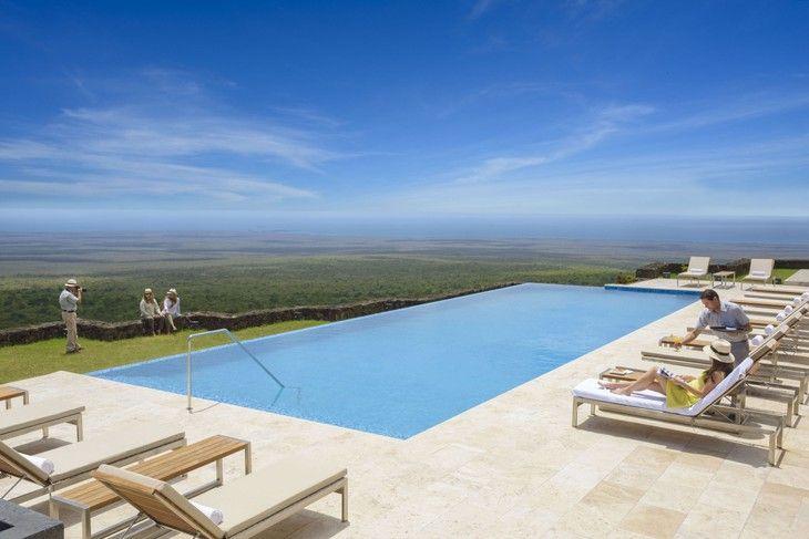 Pikaia Lodge swimming pool