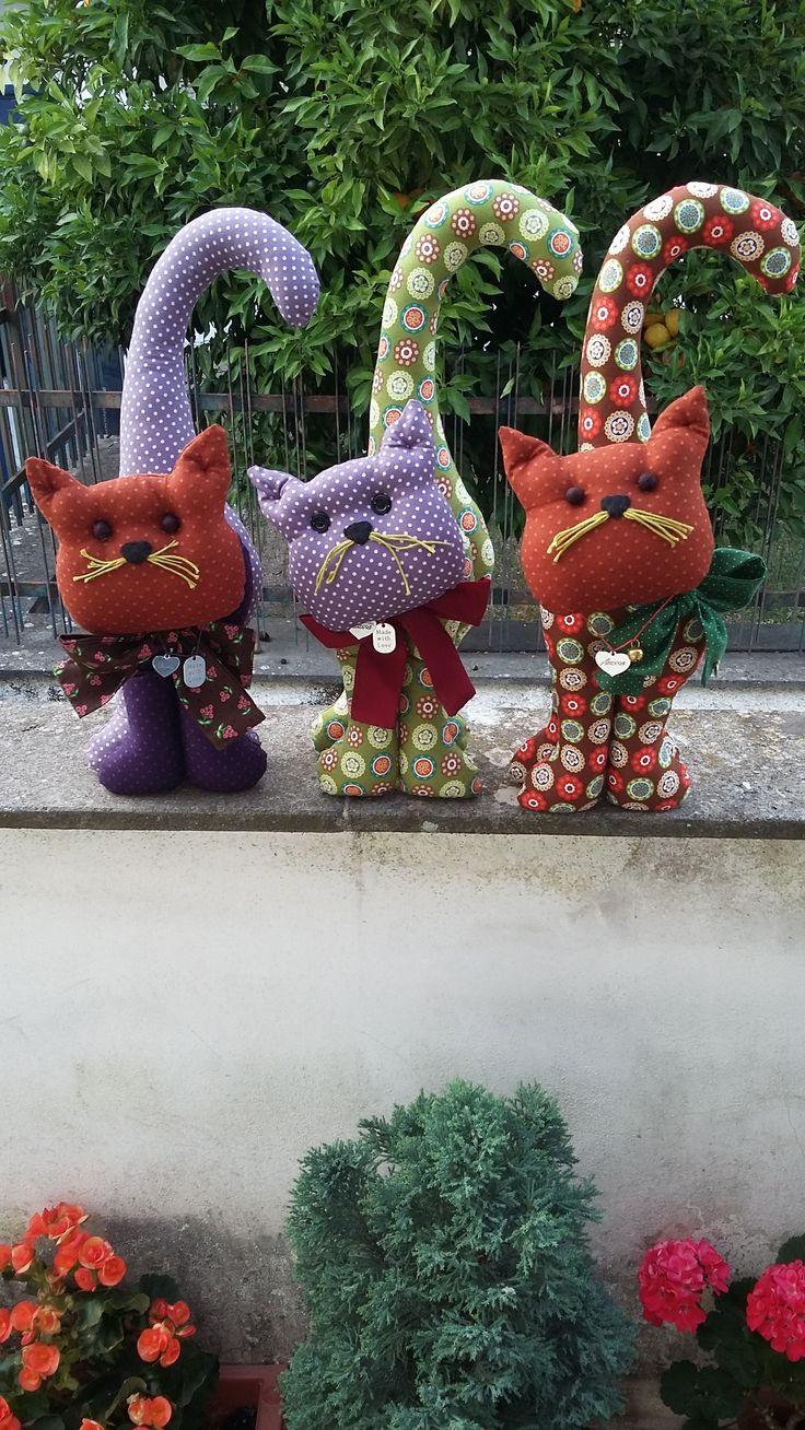 3 gattini