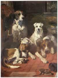 Un meritato riposo - Foxhound, Liscio Fox Terrier