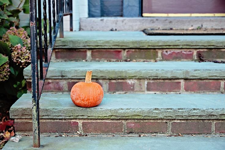 "Time to put away the pumpkins.         ""The Pumpkin Stands Alone""   Lambertville, New Jersey           It's December, and nobody asked me i..."