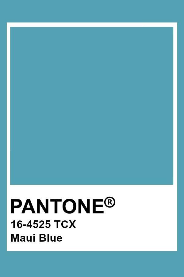 Light Blue Aesthetic Room Ideas