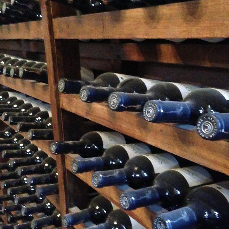 Mendoza se destaca como a principal região produtora de vinho da Argentina. A cidade encanta pela culinária, clima e proximidade com o Monte Aconcágua.