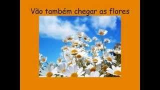 Alda Casqueira Fernandes - YouTube