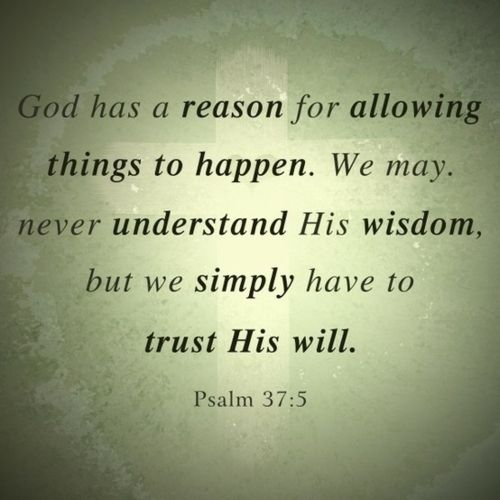 Psalm 37:5The Lord, God Will, God Plans, Remember This, Quote, Psalms 37 5, The Plans, Bible Verse, Psalms 375