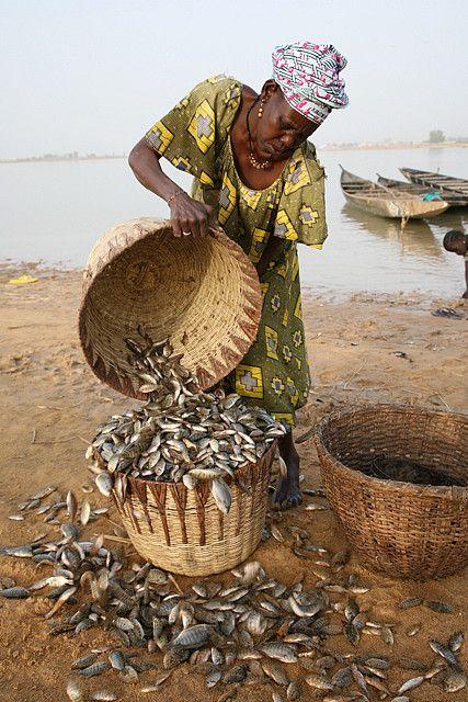 Os Bozo são um grupo étnico da África Ocidental localizados predominantemente ao longo do rio Níger no Mali. Eles são famosos por suas pescarias. Na fotografia a pescadora está próximo a Mopti, no Mali.
