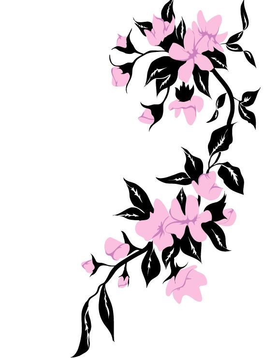 Jasmine Flower Tattoo Designs: 10 Best Jasmin Drawings Images On Pinterest